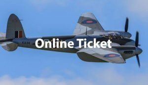 Lecture: The People's Mosquito (online ticket)